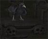 Spooky Black Crow