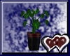 Plant V2