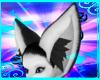 Arctica Ears