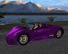 Purple Spyder
