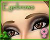 Caramel Eyebrows