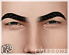 G`Octobrows-Req