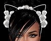 SL Felicity Ears