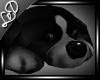 !! Black Dog Rug Poses