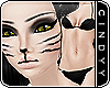 [ Cat - Pale