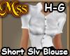 (MSS) HG3 Blouse SrtSlv