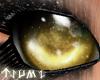 ~Tsu Gold Doll Eyes