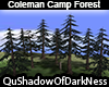 Coleman Camp Forest
