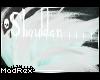 [x] Shoulder V2