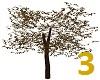 Be A Tree Avatar 3