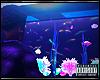 GloFish 💔®