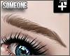 + untamed kdbrows blonde