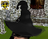 Wicked Witch Black Hat