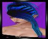 Arachnia Blue Black