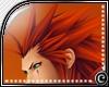 (c) Axel's Hair