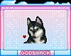 G | Husky love
