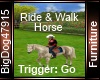 [BD] Ride & Walk Horse