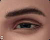 !! Van  Eyebrows II