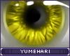 Y!-Bright