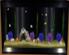 Blurred Out Fish Tank