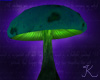Mushroom, Dome Green