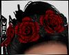Vn | Rose Glitz Crimson