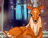 Little Deer Animated
