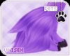 [Pets] Celest   leg tuft