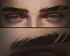 EyeBrows IV