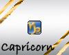 }T{Zodiac blingCapricorn