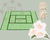 Traditional Green Tatami