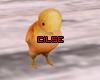 •Chick