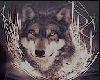 WolfT-Shirt