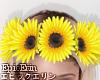 [E]*Sunflower Crown*