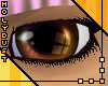 Noscere Eyes - Biscuit