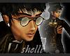 (FG) SP Station Glasses