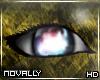 'N| Day One Eyes