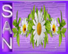 barra flowers
