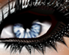 :z:Blue Eyes Mistic