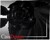 CD! Black Rose Veil