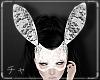 -チャ- Lace Bunny Wht