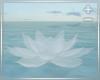 white meditation lotus