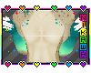 Feather Andro TOP ONLY