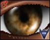 Brown eyes (m)