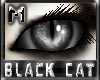 *.:.* BlackCat's Boutique UPDATED New Innocent Skin Set!! (3/18/10) *.:.* - Page 3 Images_c3a8a06a911974b2e7d9a8dd4ab7ea4d