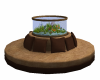 Country seating fishtank