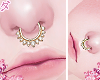 d. septum cristal gold