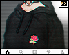 🌹 Roses 2 By Zara