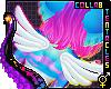 🌙 Dreamy | Wings