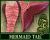 Mermaid Tail Coral